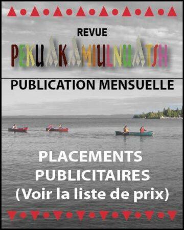 Pub journal